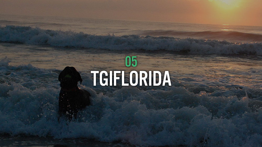 TGIFLORIDA
